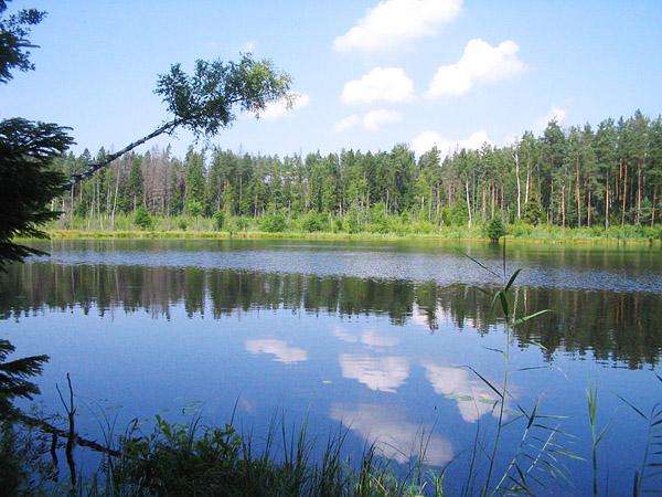 Фото и картинки природы беларуси